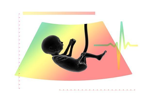 Graviditetsdefinitioner och fakta
